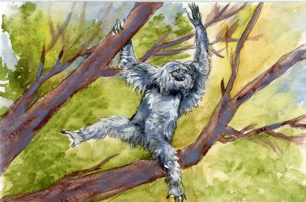 #DoodlewashSeptember2021 Prompt: Swing.#DoodlewashSeptember2021 Prompt: Swing. Did you know that gib