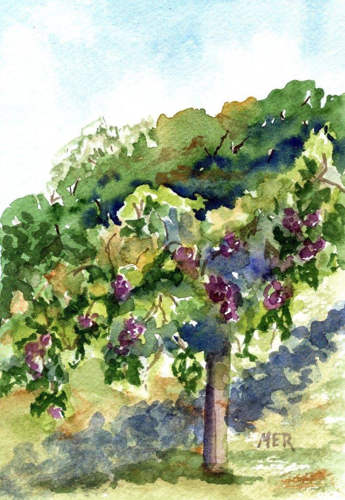 10/23/21 Grapevine 10.23.21 Grapevine img001