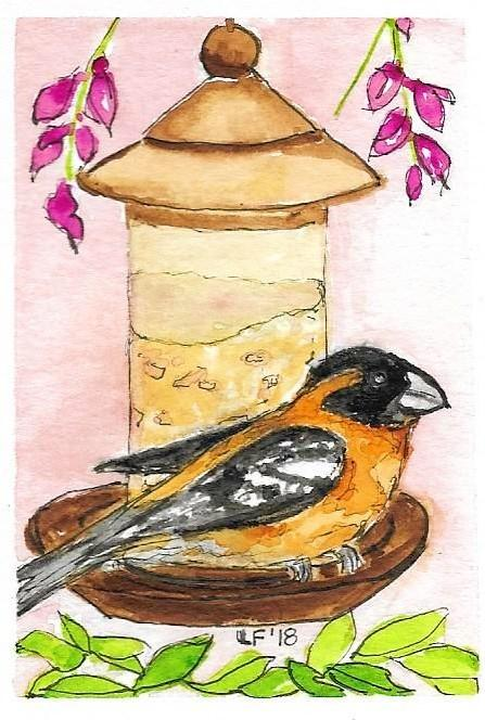 Grosbeak ATC