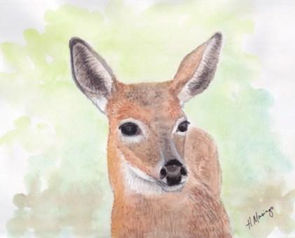 #WorldWatercolorGroup - Watercolor by Heather Musingo of deer - #doodlewash