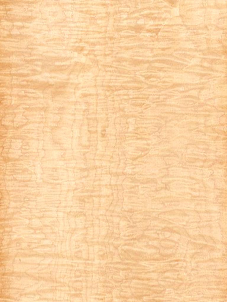 MAPLE VENEER  Dooge Veneers