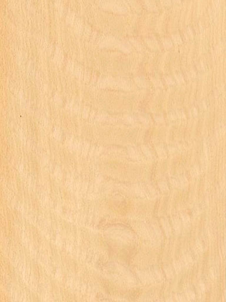 BEECHEUROPEAN VENEER  Dooge Veneers