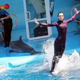 Dolphin Show Almaty