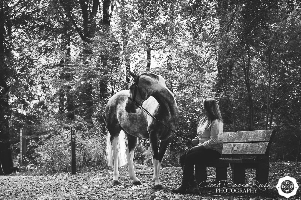 horse and rider sitting on a bench