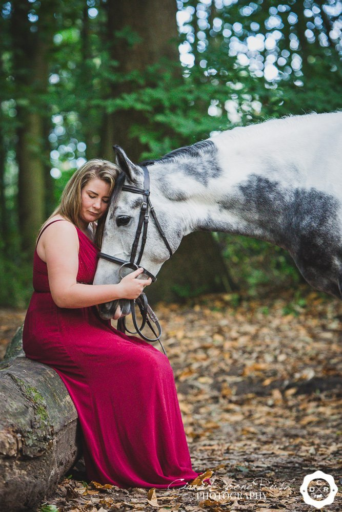 Horse and rider having cuddles
