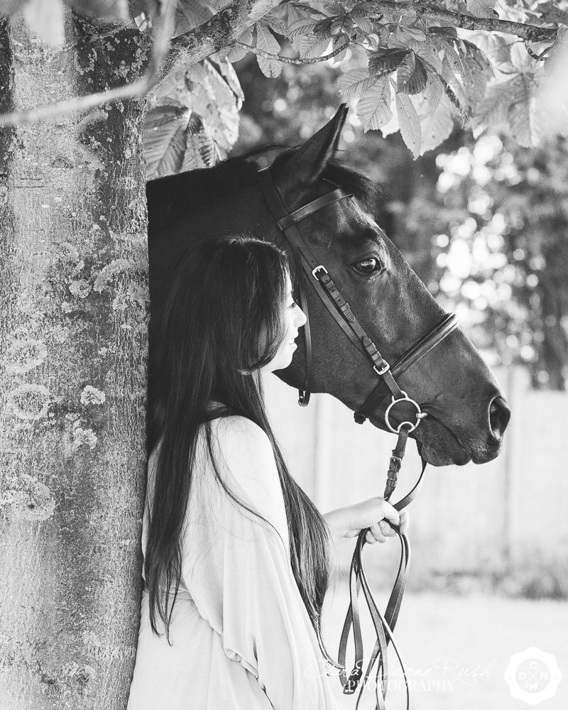 black and white portrait of a horse and rider