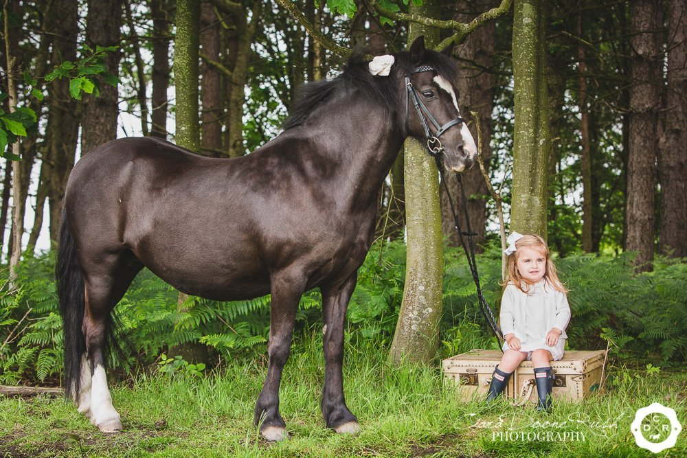 toddler and her pony on a photo shoot