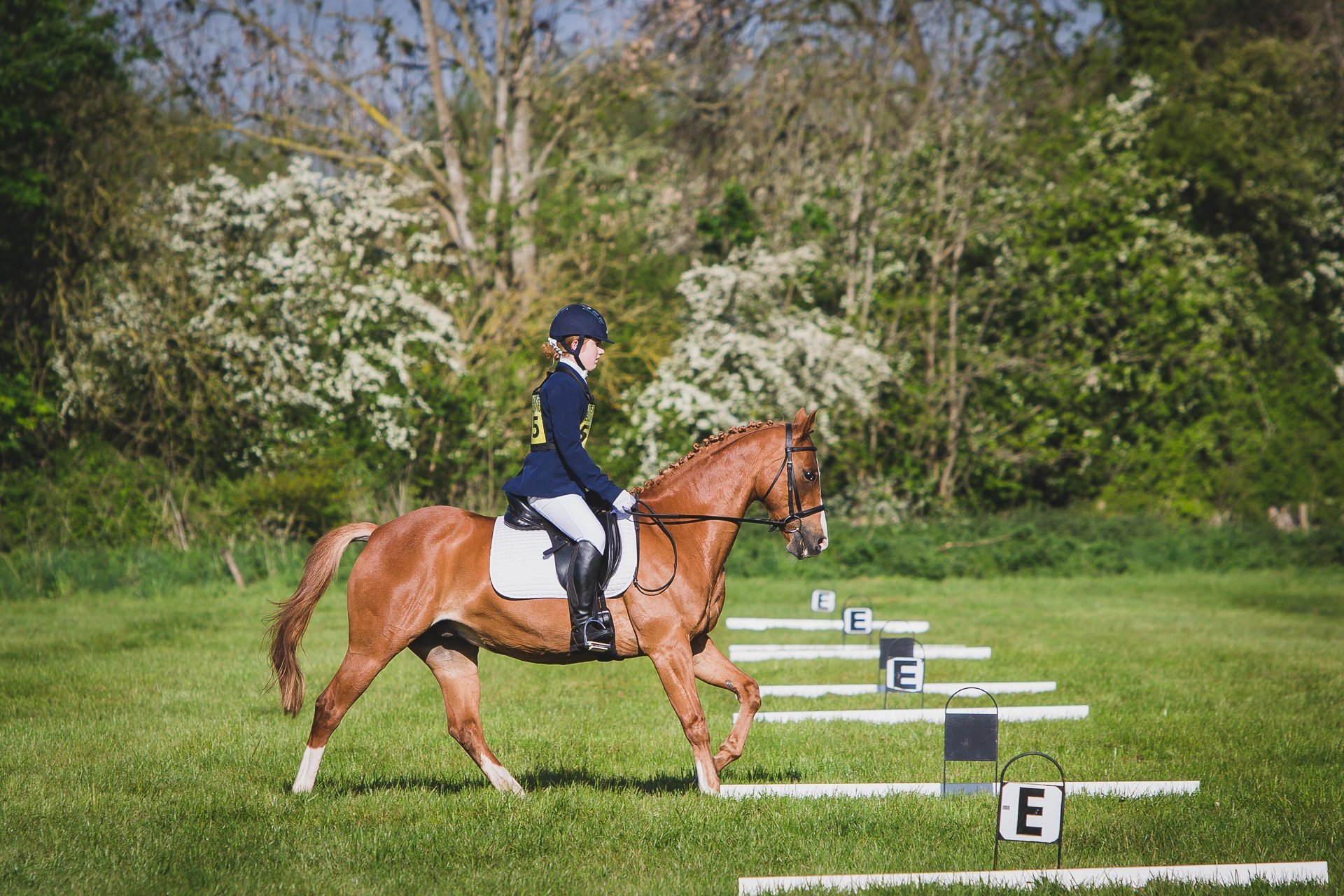 Issie and Leo in the dressage ring