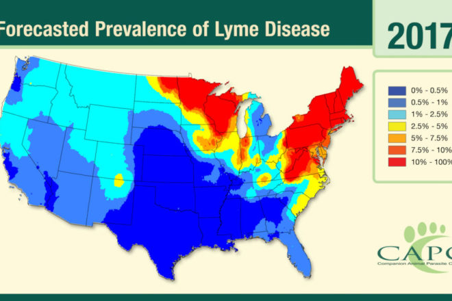 Preventing Lyme Disease with Tips for Ticks  Door County