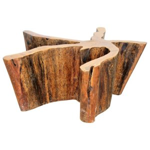 Organic Modern Tree Trunk Table by Michael Taylor