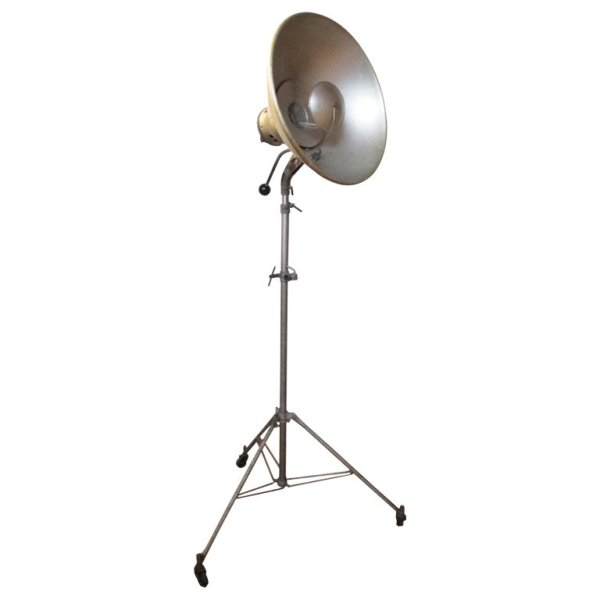 Early Photography Spotlight - Morse Co.