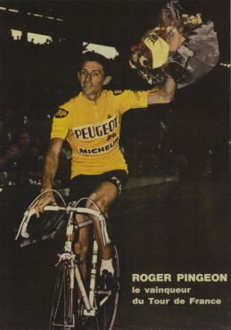 PINGEON 3