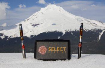 Select Strains Vape Technology: Sturdy Yet Discrete