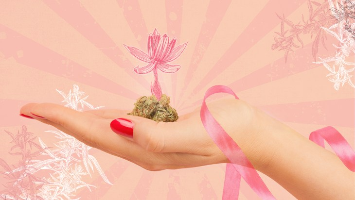 Cannabis And Cancer: Could Cannabinoids Treat Breast Cancer 2