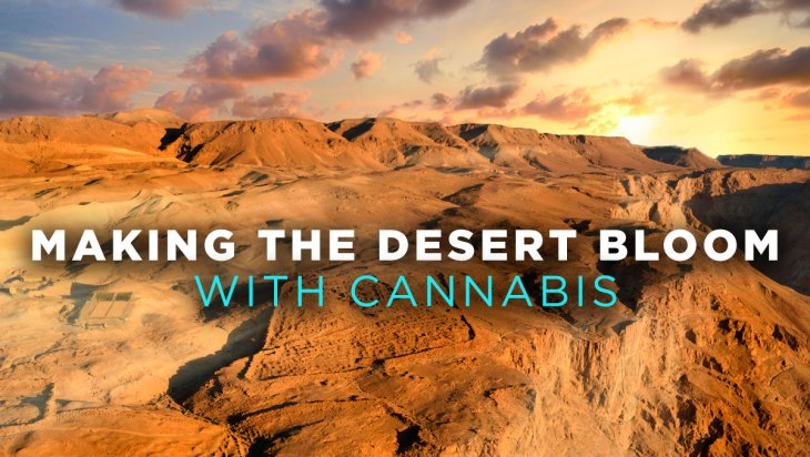 Fire Friday: Israel - Making the Desert Bloom with Cannabis