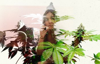 Tales from The Talk: Talking to Family about Marijuana