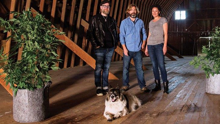HiFi Farms: Review 5