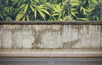 INTERNATIONAL CANNABIS BUSINESS CONFERENCE—BERLIN: Tearing Down the Walls of Cannabis Prohibition