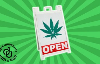 POT SHOP ETIQUETTE: Tips and Tricks for First Time Shop Goers