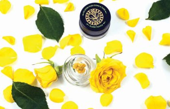 BEEZLES EXTRACTS' ROSES BUDDER: Stop and Smoke the Roses 1