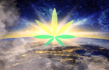 Cannabis Marijuana Legalization Global
