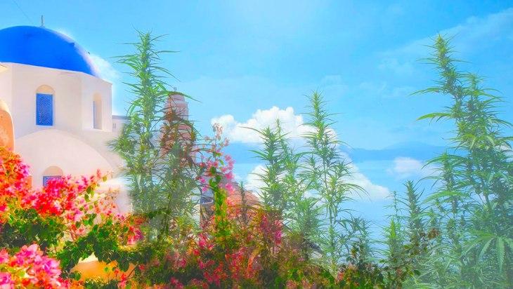 Greece Hash Hashish Legal Weed