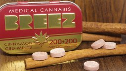 Breez Cinnamon CBD Mints