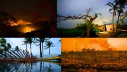 Natural Disaster California Puerto Rico Florida Texas Hurricane Wildfires