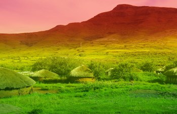 Lesotho Grants First Medical Marijuana License