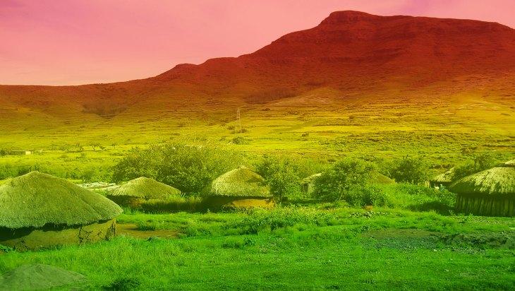 Lesotho Grants First Medical Marijuana License