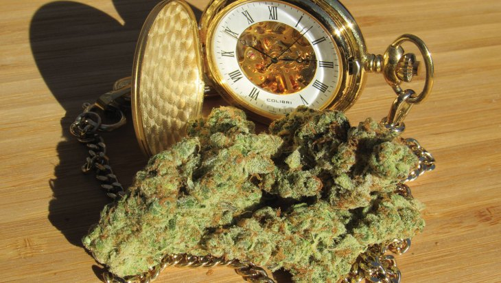 Timewreck by Nature Med - Tucson, AZ