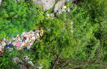 Cleaning Up Malana Environment