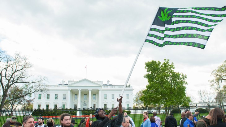 2020 Democratic Presidential Candidates on Cannabis: Past & Present