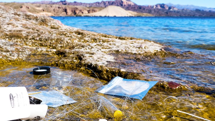 How Sana Packaging Is Reversing Cannabis' Plastic Waste Problem