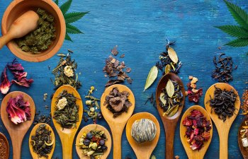 TRADITIONAL CHINESE MEDICINE WITH CANNABIS