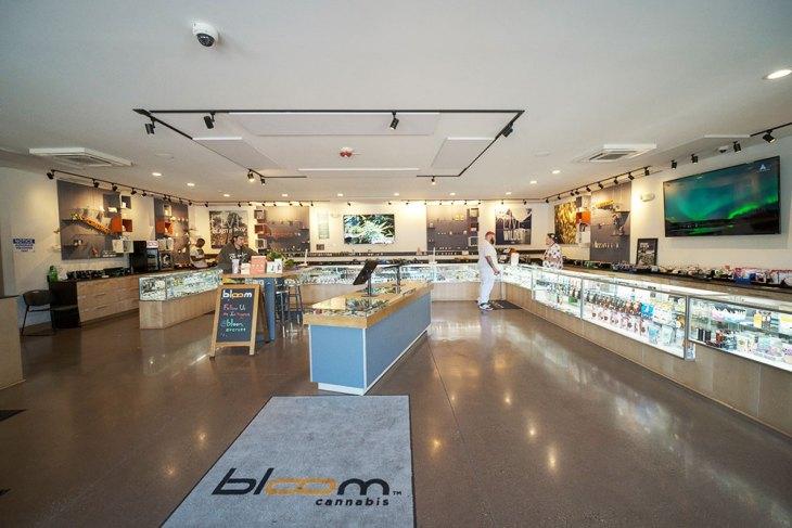 Bloom Cannabis - Everett, WA