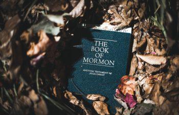 Do Modern Mormons Forbid Cannabis Use?