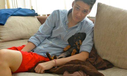 6 Tips for Dog Adoption in Korea
