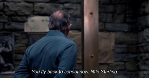 SotL-fly