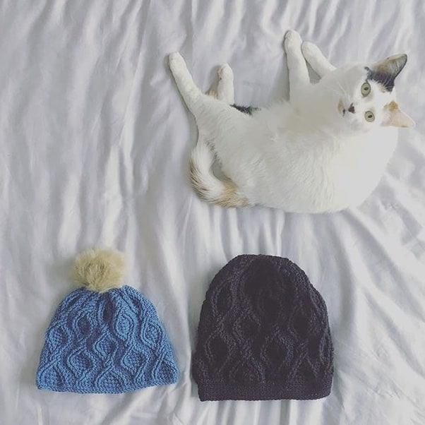 Big hat small hat and cat