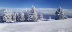 010 Ski Apache - Ruidoso, NM