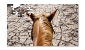 009 Horse - Puzzle image