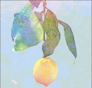米津玄師,生歌,ヤバい,テレビ,出ない理由,Lemon,歌詞,意味