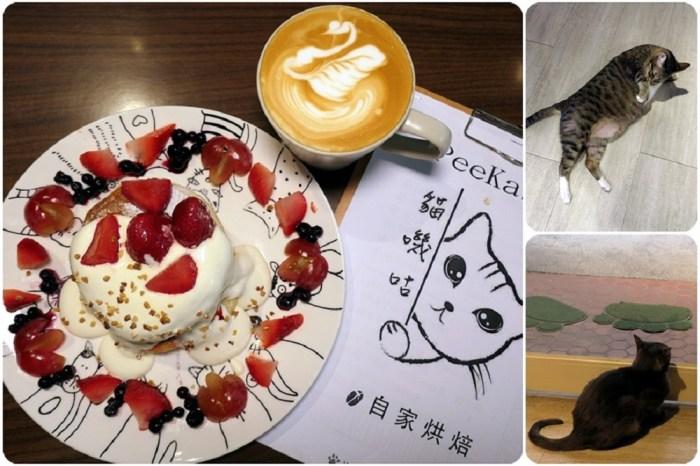 板橋貓餐廳推薦 | 【貓嘰咕自家烘焙】素食咖啡廳推薦舒芙蕾 / 跟貓一起進食 / 內有菜單