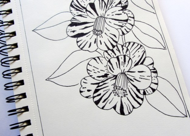 Camelia in sketchbook by DORARTIS.