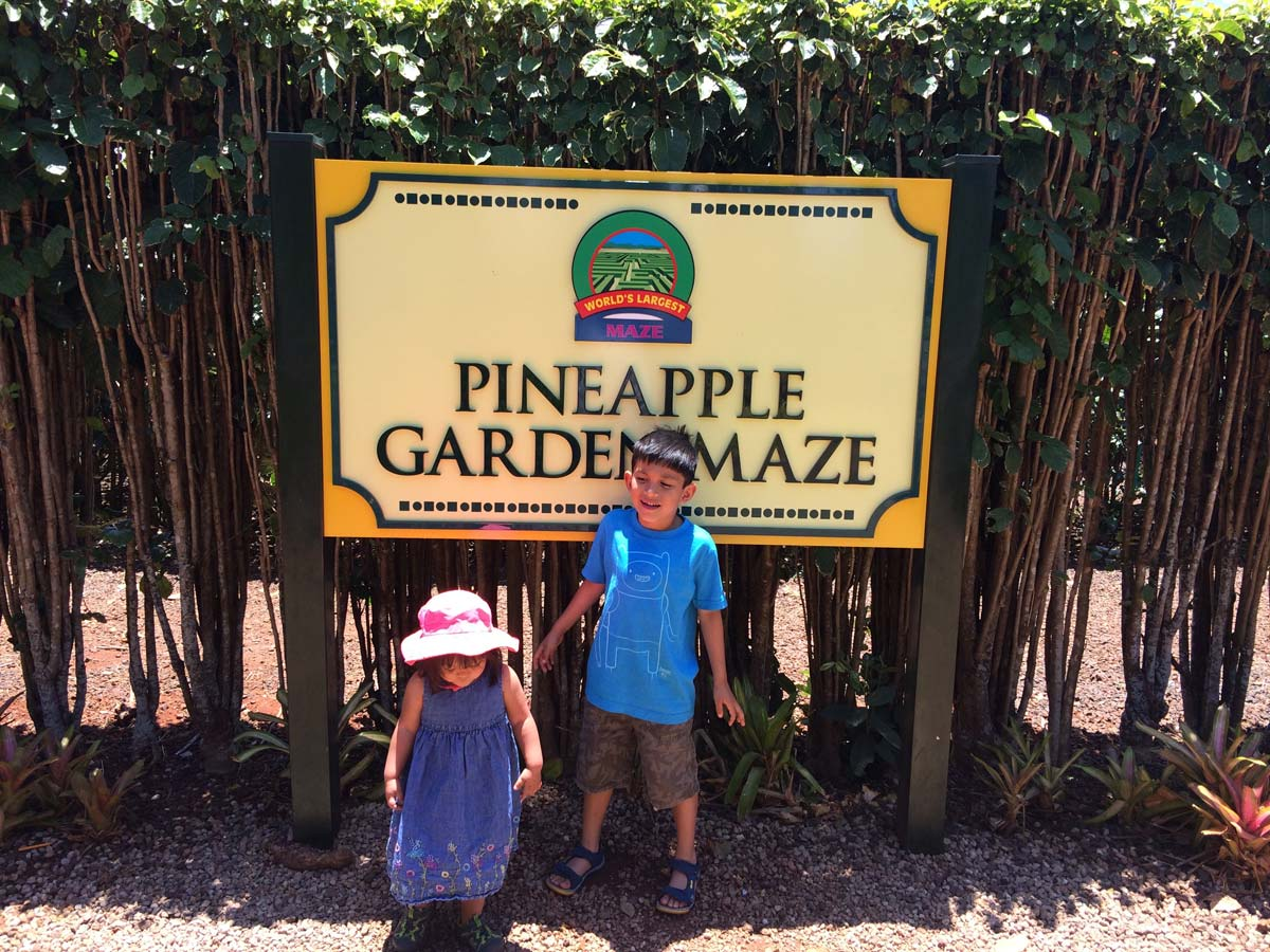 Dole Pineapple Plantation