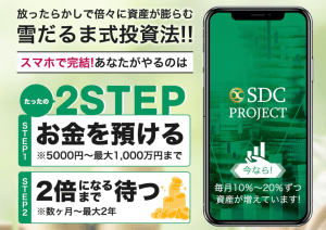 SDC PROJECT