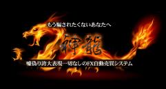 神龍 FX自動売買システム