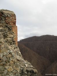 Detaliu - Cetatea Poenari 3
