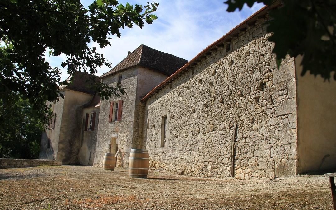 Château Thenoux – Un trésor dans le vignoble